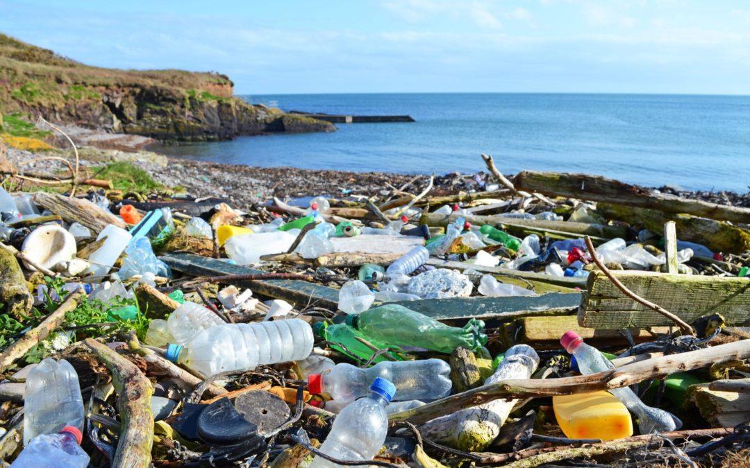 Giornata mondiale dell'ambiente – inquinamento da plastica monouso
